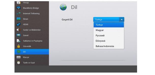blackberry-playbook-dil-degistirme