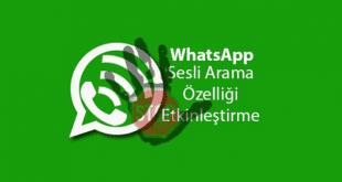 WhatsApp, Sesli Arama, Etkinleştirme, WhatsApp Sesli Arama Özelliği, WhatsApp Arama Özelliği, WhatasApp Arama Etkinleştirme, WhatsApp Voice Call,