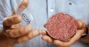 laboratuvarda yetiştirilen et, Lab Yetiştirilen ET 3 Yılda Mağaza ve Lokantada Olabilir
